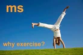ms-why exercise